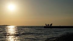 Lords of Summer (tamasmatusik) Tags: sunset summer sunlight sundown croatia naplemente adriatic adria istria hrvatska kroatien nyár fazana istrien horvátország napnyugta valbandon fasana lordsofsummer