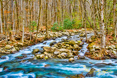 Smoky Mountain National Park (Photography by Butzin) Tags: trees mountains water leaves waterfall rocks stream ss flowing safe smokymountains greatsmokymountainsnationalpark mountainstream