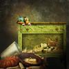 In the barn (jaci XIII) Tags: bird chicken barn pumpkin bucket galinha corn pássaro chicks macaw arara milho balde celeiro abóbora pintinhos