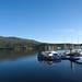 Pontoon, Caol Loch Aillse