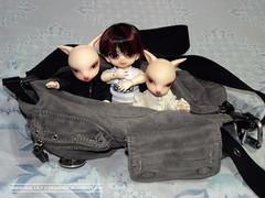 Adventurer's Club - July 'Travel Case' (Lily Skadi) Tags: doll sam leo dean fox bjd abjd daisuke dz adventurersclub dollzone fujifilmfinepixs2980