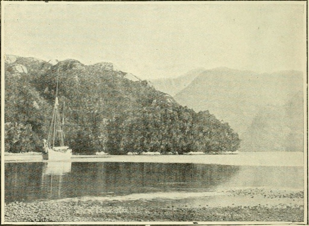 "Image from page 94 of ""The geography of New Zealand. Historical, physical, political, and commercial"" (1905)"