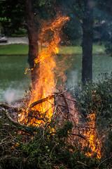 #LPTG14WK27 - Dance (Sharon Meyer) Tags: orange fire dance flames burning flame burn burningfire lptg14wk27