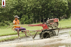 Halang/Linang 07 (Soil Cultivation) (ilusyonimages) Tags: street tractor asian photography asia farm philippines farming images illusion filipino farmer ricefields handtractor ilusyon