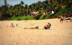 #NorthShore #Oahu #Hawaii #Sunsetbeach #D700 #nikonD700 () Tags: city friends summer vacation woman holiday beach girl island hawaii mujer nikon paradise surf waikiki oahu candid femme surfing lei insel bikini northshore   hawaiian gnarly paparazzi sunsetbeach garota honolulu mulheres frau 70300mm isle fille rtw isla aloha petite vacanze mahalo roundtheworld  globetrotter le wahine hangten cowabunga  nainen   10days gatheringplace worldtraveler  kvinna thegatheringplace vrou d700 nikond700     hawaii2011    o   20112509