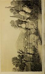 Anglų lietuvių žodynas. Žodis arboreous reiškia a 1) miškingas; 2) arboreal 2 lietuviškai.