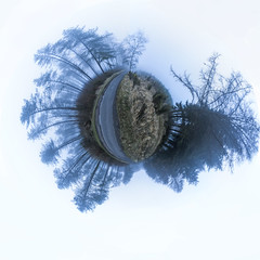 Limbo 48/365 (rmrayner) Tags: 360180planetarypanorama foggyforest countryroad spooky trees fog 45shotpanorama eerie 48365 365daysof2017 365project 365the2017edition sliderssunday