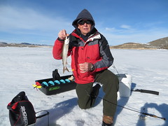 Larry With A Lake Trout (fethers1) Tags: icefishing fishing williamsforkreservoir laketrout