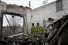 Blink (piecesofdetroit) Tags: detroitgraffiti detroit graffiti street art streetart graffitiart graffitiwriters motorcity piecesofdetroit germanfriday friday leicat killthematador thegermanfriday blink blinker thinkblink