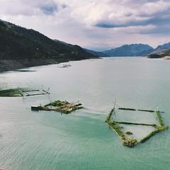 phà vạn yên (peakinrai) Tags: hydroelectric ferry mộcchâu projets