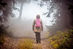 Attention! Fog in line! / Pozor! Za čiarou hmla! (Peter PeBe Bosko) Tags: hmla fog foggy nikond610 28300mm staralubovna nature les forest travel mist misty osly oslivrch line lines slovensko slovakia tura turistika vylet cestovanie