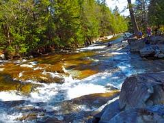 Falls (dan.kalashian) Tags: waterfall water rock falls nature outdoors river stream jackson rivers waterfalls landscape hdr wet forest summer