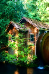 Cabin at Minter Gardens (David Basiove) Tags: woodcabin waterwheel trees green water bc canada vancouver fraservalley