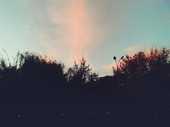 Sunset vibes. Autumn. Yerevan.   #sunset #vibes #sunsetvibes #autumn #evening #mood #yerevan #evn #vsco #vscocolor #vscocam #vscof2 (ani_smbati) Tags: sunsetvibes vscocolor vibes autumn evening yerevan vscocam evn vscof2 mood sunset vsco