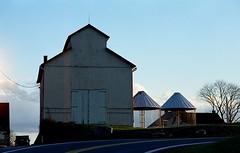 tobacco barn (bluebird87) Tags: barn tobacco farm nikon f5 dx0 c41 epson v600 film kodak ektar 100
