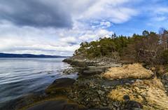 Sandberga, Frosta (Trond Sollihaug) Tags: sandberga frosta norway fjord sea shore trondheimsfjord seaview