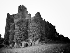 Ivy Castle Pt. 1 (Never Exceed Speed) Tags: ivy galway abandonedbuilding menlocastle menloughcastle castle ireland black white
