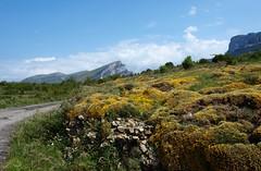 Valle de Vió (J Carrasco (mundele)) Tags: valledevio pndeordesaymonteperdido huesca pirineos