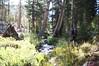 DSC06404 (intothesierra) Tags: convictlake owensriver owensrivergorge mammothlakes lake duckspass sierras fishing hiking nature backpacking