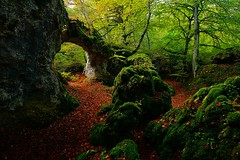 Pasabide naturala (Natural passage) (iban pagalday) Tags: arkua arco arch basoa bosque forest araba alava natura naturaleza nature paisaia paisaje landscape iban pagalday