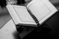 Holy Quran, Imam Helmi Agha (Imam Helmi Agha) Tags: imam helmi agha muslim scholar kaaba makkah mosque spiritualism peace polar quran islam owl cubs loin