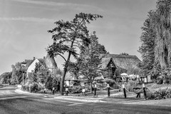 The Chestfield Barn [new edit] (Aliy) Tags: chestfield kent black white monochrome village pub whitstable golfclub conifer tree oldtree thatch thatchedroof thatchedrooves fence thatched oast oasthouse