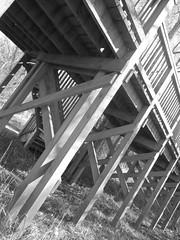 bird hide - Llangorse Lake (ali j5) Tags: woodwork birdhide llangorselake blackandwhite patterns