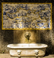 Bebedouro / Drinking fountain (jadc01) Tags: d3200 nature natureza nikon1855mm riodejaneiro fountain water tiles wall streetphotography detail map lion sculpture