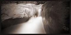River Rocks -- Muddy Creek (DRCPhoto) Tags: ondu pinhole lenslessphotography kodak t400cn 120film muddy creek westvirginia