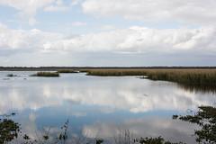 Clouds (Susan K Shoots Nikon) Tags: brazos bend state park texas nikon d7100 outdoors nature