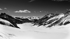 Aletsch Glacier (Ron Scubadiver's Wild Life) Tags: switzerland glacier snow ice mountains sky blackandwhite monochrome nikon landscape