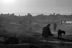 (sparth) Tags: blackwhite blackandwhite bw noirblanc noiretblanc nb brouillard fog foggy beach plage sony