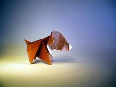 Dog - Edwin Corrie (Rui.Roda) Tags: origami papiroflexia papierfalten chien perro cão cachorro dog edwin corrie