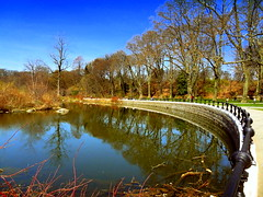 White Levy Esplanade (dimaruss34) Tags: newyork brooklyn dmitriyfomenko image spring sky clouds reflection trees prospectpark