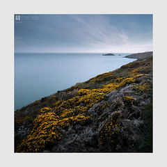 Kiss (Stuart Leche) Tags: cliffs coast erosion geology gorse grass island landscape leisure longexposure naturalarch outdoor pembrokeshire rocks scenery scenic sea seascape serene spring stack stuartleche wwwstuartlechephotography