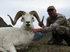Alaska Dall Sheep Hunt & Moose Hunt 13