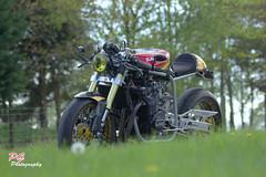 SAVAGE (paul giles19) Tags: savage biker build off cafe racer paulgilesphotography suzuki barry sheene number 7