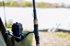 New Celtic Lakes (DanD7100) Tags: nikon nikkor 40mm micro macro lens f28 d5300 d7100 outdoor fishing carp nash tackle scope rods mirror common chub super cyfish bivvy fox hook leads cradle scales rod tips new celtic lakes 2017 spider