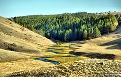 Sept 25 2011 - North Fork of the Powder River (La_Z_Photog) Tags: lazy photog elliott photography big horn mountains rome hill road hazeelton wyoming 092511bighornmountains