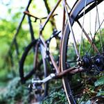 Park Bike thumbnail