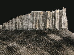 Large log End at the Essex Shipbuilding Museum, Essex, MA_4527 (photoholic1) Tags: wood abstract tree log esm