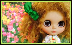 Blythe A Day May 13th, 2014 Tulips