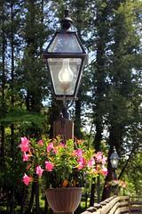 9982 (Marbeck53) Tags: travel flowers trees vacation canon eos tn bokeh streetlamp gatlinburg railing planter smokymts 60d marbeck53 markriesenbeck