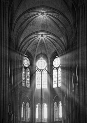 Cathedral (Stewart485) Tags: paris france cathedral places notredame evocative architectureandbuildings vaguelyarty