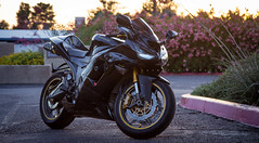 636 III (Skyrocket Photography) Tags: black photography gold ninja 2006 motorcycle sportbike skyrocket zx6r 636