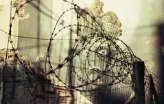 The Wall (Julian Farrell) Tags: paran uruguay atlantida