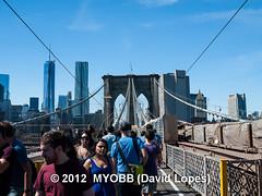 NYC Brooklyn-0246139 (myobb (David Lopes)) Tags: nyc newyorkcity newyork brooklyn manhattan olympus brooklynbridge manhattanbridge e510
