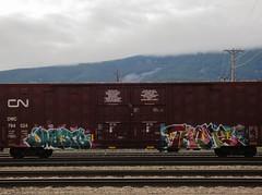 JNASTE, THEME (YardJock) Tags: railroad graffiti spraypaint boxcar piece freighttrain benching paintedsteel boxcarart benchreport