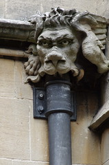 Gargoyle downpipe (iris_bell59) Tags: lion gargoyle grotesque downpipe