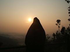 """Daerah Istimewa Yogyakarta • <a style=""""font-size:0.8em;"""" href=""""http://www.flickr.com/photos/124882417@N06/14395237712/"""" target=""""_blank"""">View on Flickr</a>"""
